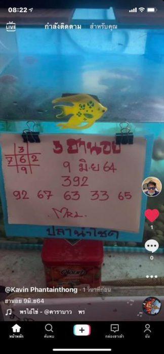 แนวทางหวยฮานอย9-6-64-วันนี้.com9