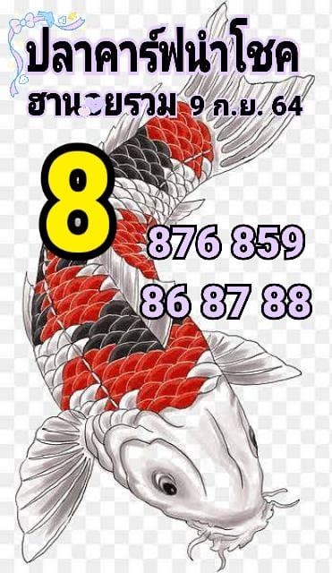 แนวทางหวยฮานอย9-9-64-วันนี้.com8